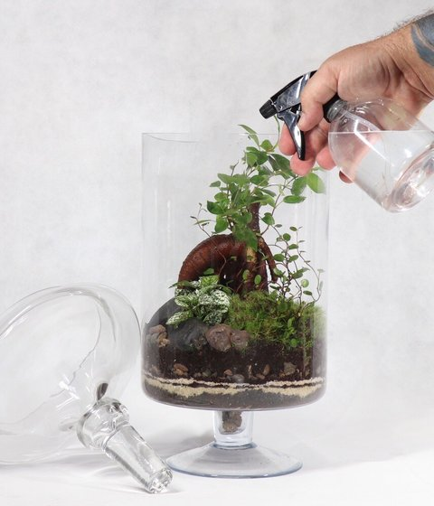 ecosystems for your home and office.